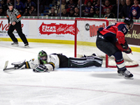 Spitfires are Knott backing down from defending Champs